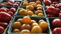 Gardens and markets all over are bursting with real tomatoes, not those pale winter things.(File Photo - 117859)
