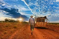 """Waggoner ranch Cowboy Jimbo Glover, Wagon Boss, has worked on the ranch since 1975. """"I'm a creature of habit. I like to do things the same way, and that way, it won't be confusing,"""" Jimbo says. """"Those that've known me a long time know how I like things done."""""""