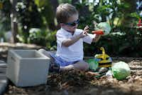 Ingram Johnson, 3, plays during the opening of the Dallas Arboretum Rory Meyers Children's Adventure Garden in Dallas, Saturday, Sept. 21, 2013. (Garett Fisbeck/The Dallas Morning News)(Garett Fisbeck - Staff Photographer)