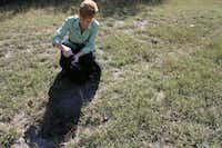<TypographyTag14>Victoria Clow</TypographyTag14> kneels to examine a depression in the middle of McCree Cemetery. Clow, who has served in a preservation and archaeological role for the restoration of other area historic cemeteries, will be the project manager for the McCree Cemetery project.Staff photo by HEATHER NOEL