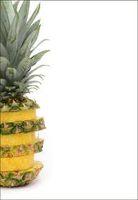 A 2012 studio shot of a pineapple, one of many photo related tasks Pamela still enjoys as an editor for