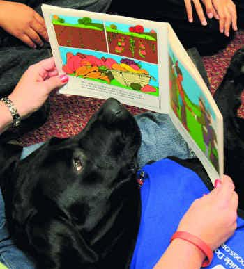 Pooches get paws-on learning in Garland schools | Garland ... | 200 x 221 jpeg 11kB