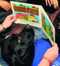 Pooches get paws-on learning in Garland schools | Garland ...  Laura Carver Facebook