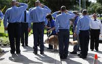 """<p><span style=""""font-size: 1em; background-color: transparent;"""">Bretagne the last surviving search and rescue dog from 9/11 is walked by her handler Denise Corliss past a flank of members of the Cy-Fair Volunteer Fire Department, as she was brought into the Fairfield Animal Hospital, Monday, June 6, 2016, in Cypress, Texas to be euthanized.</span></p>(<p><span style=""""font-size: 1em; background-color: transparent;"""">(Karen Warren/Houston Chronicle via AP)</span></p>)"""