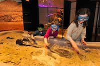 The traveling exhibit also includes an 11-by-15-foot dig pit where kids can search for replicas of dinosaur bones.(Denis Finnin)
