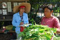 Tiah Lambert, left, takes note as Buddi Rai weighs a portion of her harvest. Lambert is the wife of Don Lambert, founder of Gardeners in Community Development.