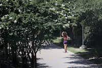 A pedestrian walks along the Katy Trail near the trail's southern terminus north of the American Airlines Center in the Victory Park area of Dallas Tuesday June 22, 2016. (Andy Jacobsohn/The Dallas Morning News)