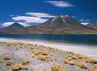 """Blue Laguna Cejar is a startling contrast to the Atacama Desert of northern Chile.(<p><span style=""""font-size: 1em; line-height: 1.364; background-color: transparent;"""">Augusto Dominguez</span><br></p><p></p>)"""