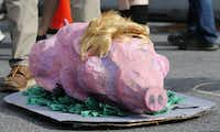 A pig dressed up as Donald Trump on the ground during a protest before the start of the Republican National Convention in Cleveland, Ohio on Sunday, July 17, 2016. (Vernon Bryant/The Dallas Morning News)(Staff Photographer)