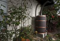 A rain barrel is a great addition to the garden. (Brandon Wade/Special Contributor)