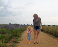 A mom and her toddler walk along the flower garden path at Becker Vineyards.(Tina Danze)