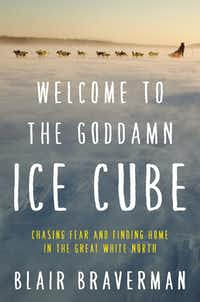 Welcome to the Goddamn Ice Cube, by Blair Braverman(Ecco)