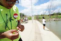 "<p><span style=""font-size: 1em; line-height: 1.364; background-color: transparent;"">Kyra Dewberry, 16, of Cedar Hill baits her hook while she and her mother fish at Cedar Hill State Park in June.</span></p>(Lawrence Jenkins/Special Contributor)"