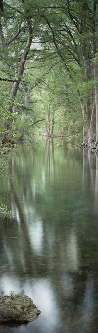 David H. Gibson, <i>Three Trees and Stone</i>, May 25, 2014, 7:30 AM, Cypress Creek, Wimberley, Texas, archival pigment print, 60 x 17 5/8 inches, edition of 12.(David H. Gibson/Valley House Gallery<div><br></div><div><br></div>)