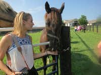 """<p><span style=""""font-size: 1em; line-height: 1.364; background-color: transparent;"""">At the Hagyard Equine Medical Institute, visitors can feed horses veterinarian-approved treats.</span></p>(<p><span style=""""font-size: 1em; line-height: 1.364; background-color: transparent;"""">Wesley K.H. Teo</span></p>)"""