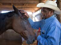 Avist Owens, 67, pets his horse, Sandy, at his barn in Hutchins, Texas. After having bladder cancer years ago, he was diagnosed with breast cancer last year and had a mastectomy. Sandy lost her right eye from horse racing years ago.(Ting Shen/Staff Photographerr)