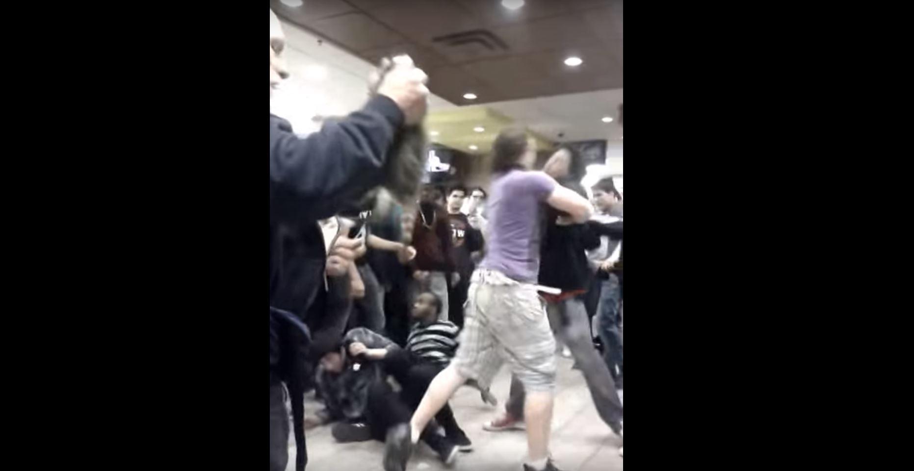 raccoon makes cameo in mcdonald s brawl crime dallas news