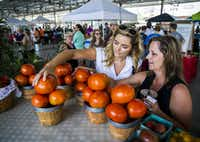 Katie Parker (left) and Dena Tartaglino (right) choose fresh tomatoes from the Lemley's Farms table at the Dallas Farmers Market in June.(Staff Photographer)