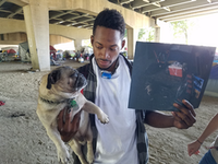 Gary Pearson, 23, with one of his photos and his neighbor's pug, Steven Seagal, at their homeless encampment near Haskell and Ash. <br>(Marc Ramirez/Staff<br>)
