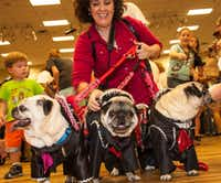 This year's Pug-O-Ween is Sunday at the Grapevine Convention Center. (File Photo/DFW Pug Rescue)