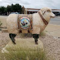 One of many fiberglass sheep stands next to M.L. Leddy's in San Angelo. The sheep, a reference to the town's status as a top wool producer, dot the downtown landscape. (Helen Anders)