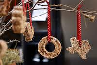 Tina Dempsey's Christmas ornaments of birdseed hang from a plant on display at her home.((Ben Torres/Special Contributor))