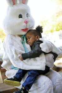 The Easter Bunny comforted Zayne Douglas, 3, of Dallas, a visually impaired boy who was upset by party noise, at White Rock Lake on March 24. The Dallas Independent School District held their annual Beeping Easter Egg Hunt for visually- and hearing- impaired children of low-income Dallas families.(Tom Fox)