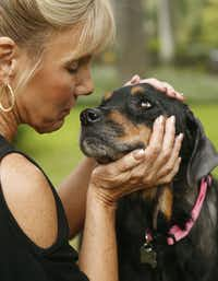 <p>Hope the Rottweiler is recovering and regaining strength at the home of Sherri Green (pictured), who is fostering her. Hope was discovered near death and rescued by Marina Tarashevska.</p>(Michael Ainsworth/Staff Photographer)