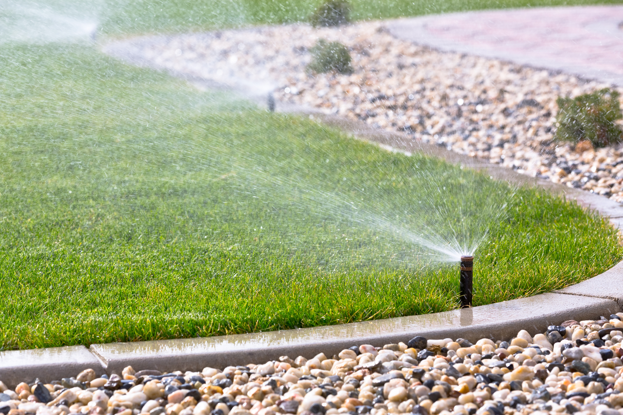 This is the healthy way to water your yard in the winter