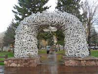 Shed elk antlers are used for artistic purposes, as in the arches at Jackson's town square. (Robin Soslow)