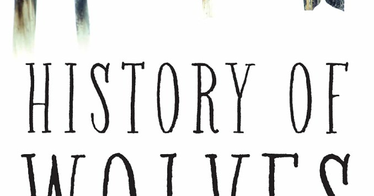 'History of Wolves' is a novel full of puzzles, practical