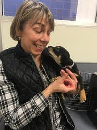 Foster Wendy Reiner holds one of the puppies she has temporarily cared for.((Dallas Animal Services))