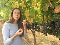Third generation vintner Hailey Trefethen of Trefethen Winery leads the sustainability initiative at the family business.(Kathy Chin Leong)