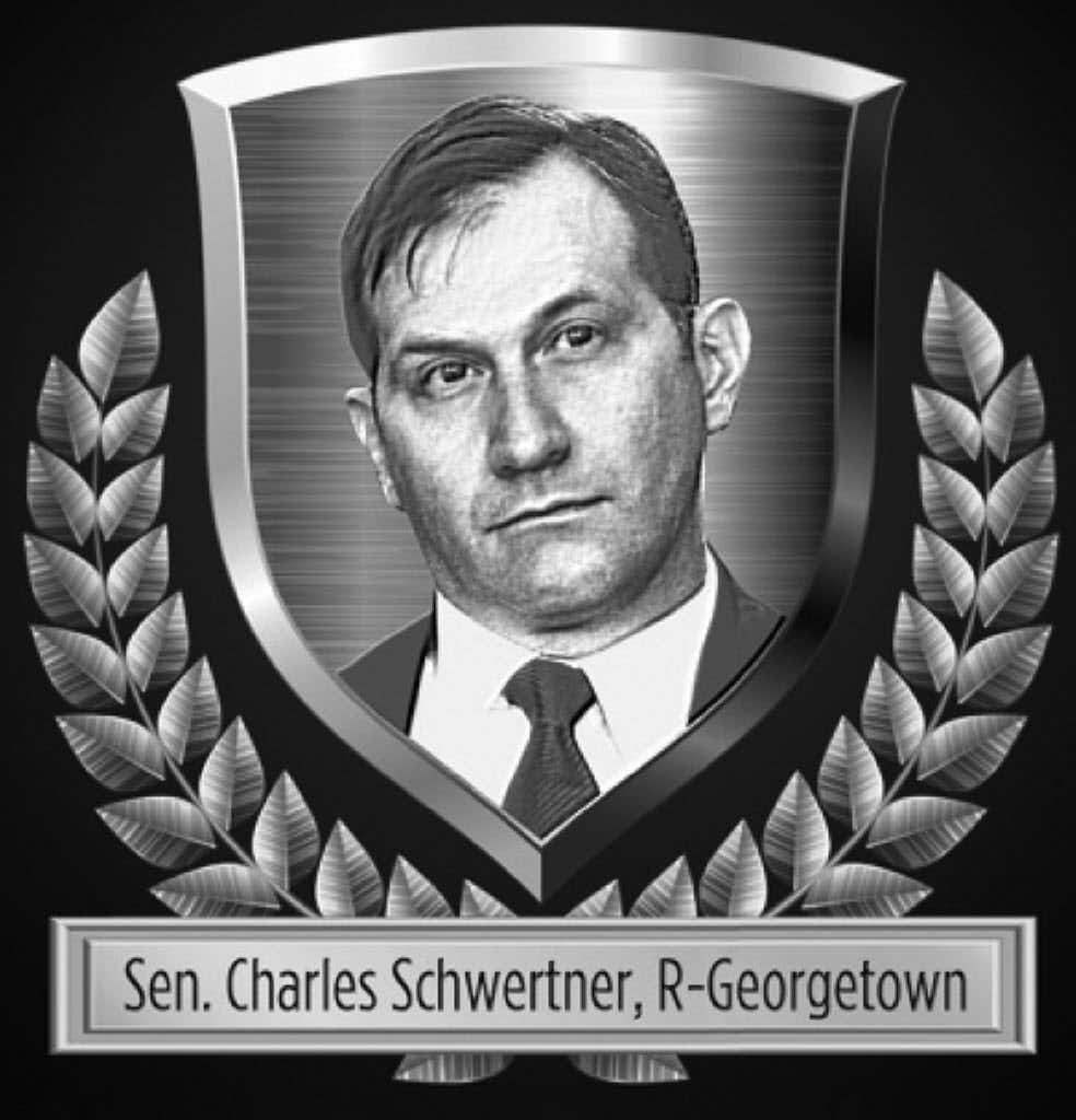 "<p><span style=""font-size: 1em; background-color: transparent;"">Sen. Schwertner led the fight against businesses that improperly added a surcharge when paying with a plastic card. He was also key in fighting fingerprints being taken of all state drivers.</span></p><p></p>"