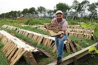 Andreas Gugumuck at his snail farm in Vienna.(Michaela Urban)