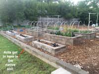 Can 00 sandblasting sand stop ants in this Dallas garden?(Reader photo)