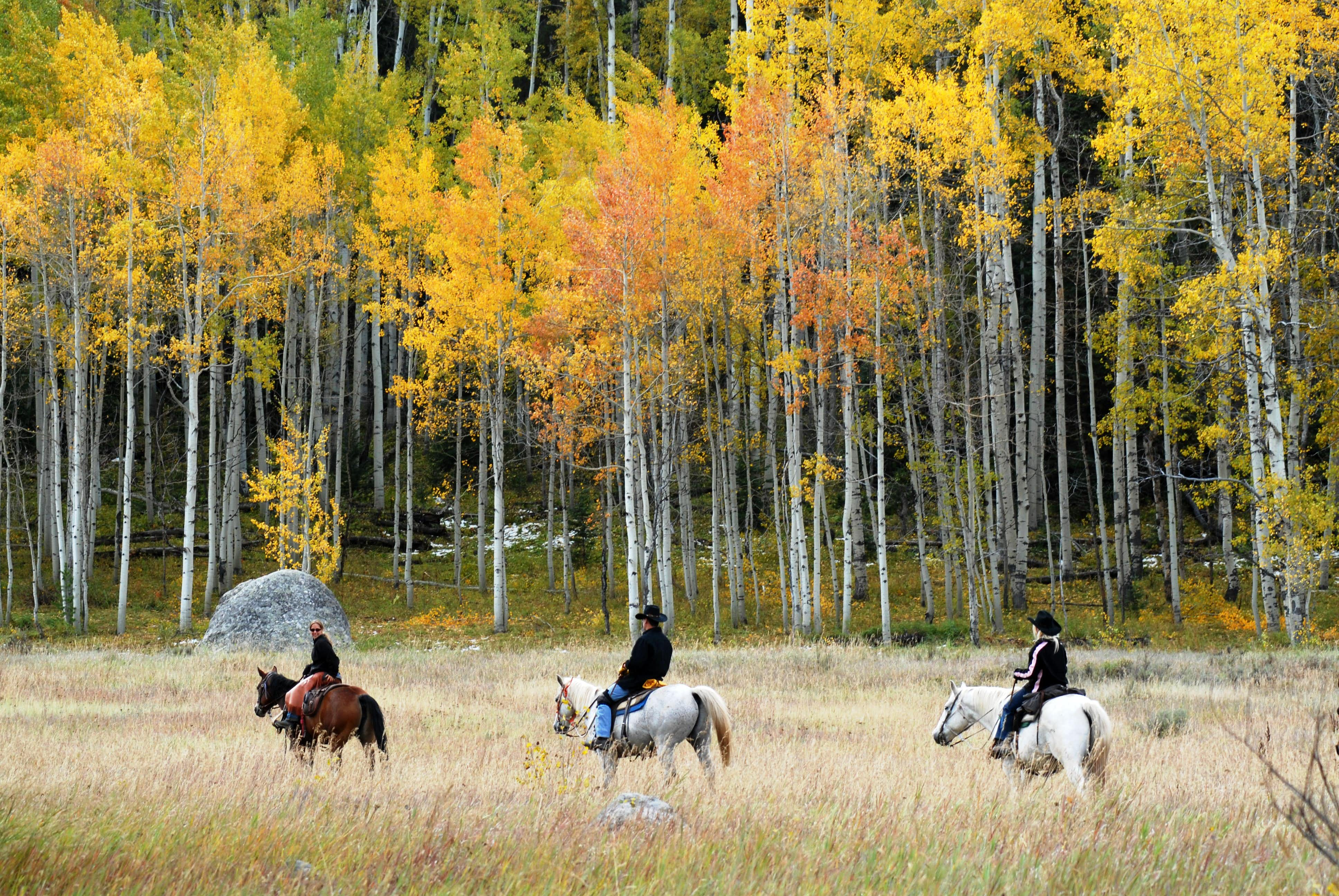 5 Guest Ranches With Cozy Cabins Campfires And Lots Of