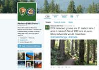 This photo shows a Twitter post from the National Park Service's Redwoods National Park account. The National Park Service employees' Twitter campaign against President Donald Trump has spread to other parks. (National Park Service)