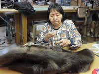 Anna Steelman stitches together beaver pelts to make a vest. Steelman works in the factory at David Green Master Furrier in downtown Anchorage, where visitors are welcome to look on as the fur makers work.Jay Jones