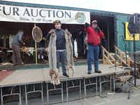 Auctioneer Clark Smith (right, in red jacket) seeks bids for two lynx pelts. Pelts from 11 different animals were auctioned during the 2016 Anchorage Fur Rendezvous.Jay Jones