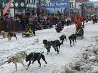 Sled dog races through the streets of downtown Anchorage are among the popular activities held during the city's annual fur rendezvous.Jay Jones