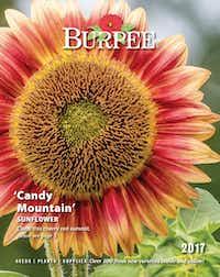 Burpee 2017 seed catalog(Burpee)