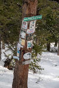 Elvis Presley shrine, Aspen Mountain Ski Area, Aspen, Colorado. (Dan Leeth, Special Contributor)