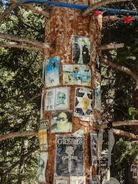 Hunter S. Thompson shrine, Aspen Snowmass Ski Area, Snowmass Village, Colorado.(Dan Leeth, Special Contributor)