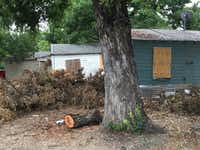 A row of bungalows on Clarendon Drive are in disrepair and have landed on the August 10 Drops list(Dallas Morning News)