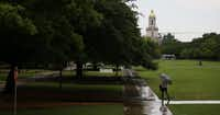 Baylor University (DMN file)