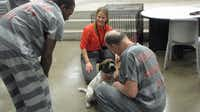 Two Dallas County inmates interact with Diamond, one of the five dogs from Prairie Paws participating in the Homes for Hounds program at the Dallas County Jail.((Facebook/Dallas County Sheriff's Department))