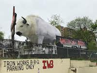 A giant white buffalo glared at conference attendees who walked by. It became a popular photo op at SXSW.(Melissa Repko/The Dallas Morning News)