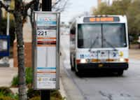An Arlington MAX bus stops at College Park on the campus of the University of Texas at Arlington.((Nathan Hunsinger/The Dallas Morning News))