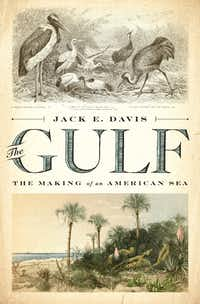 <i>The Gulf: The Making of an American Sea</i>, by Jack E. Davis(Liveright)